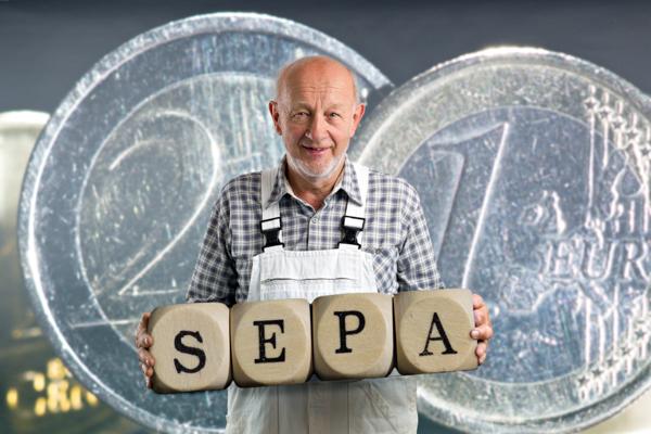 Die betriebswirtschaftliche Maler-Software C.A.T.S.-WARICUM ist SEPA-fit.