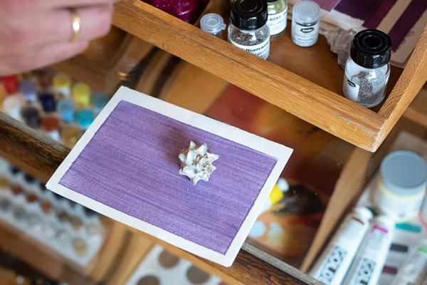 Kremer Pigmente - Purpur, das wertvollste Pigment aus dem Sekret einer Schnecke gewonnen