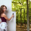 Der CO2-neutrale Malerbetrieb? Malermeister Peter Goehle setzt Akzente